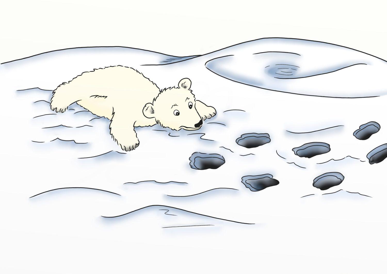 Der kleine Eisbär Luca und die Arktis